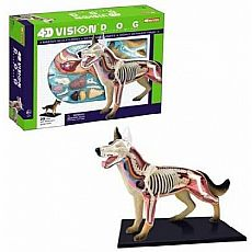 4D Vision Dog Anatomy Model