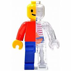 4D Brick Man Anatomy Model
