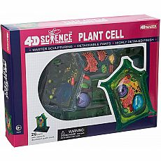4D Vision Plant Cell Anatomy Model
